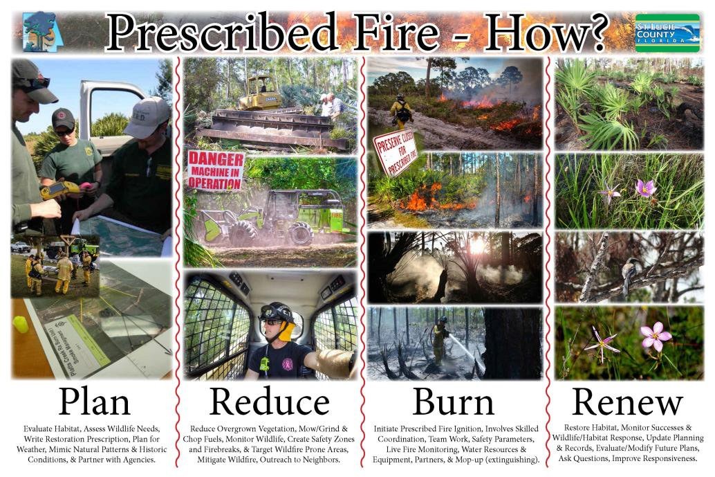 RxFire_Steps_email