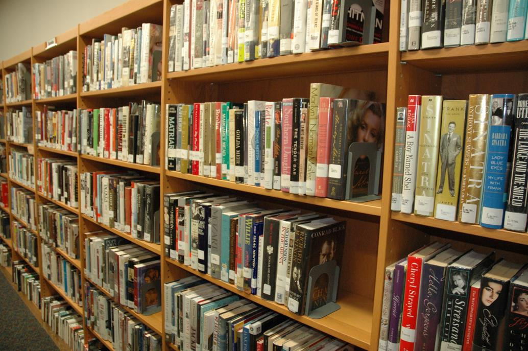 Library shelves LWP