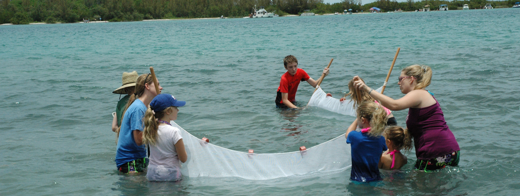 School kids seining in the Indian River Lagoon