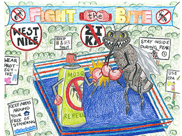 2019 Poster Contest Winner: Fight the Bite. Student drawn image of a mosquito in a boxing ring