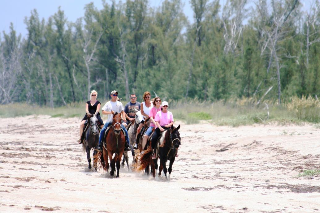 The Beaches Of Hutchinson Island In Fort Pierce Are Proud To Be One Only Places Within State Florida That Permits Horseback Riding On
