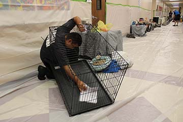 Animal Control setting up crate